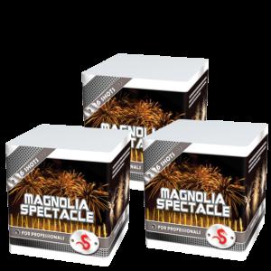 Magnolia Spectacle (3 halen = 1 betalen)